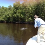 fishing charters in Naples, Florida