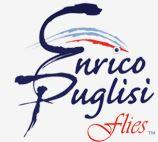 Enrico Puglisi Flies