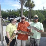 Redfish charter in Everglades