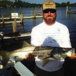 Snook fishing charter in Everglades City