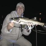 Snook night fishing charter