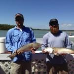 Redfish fly fishing Everglades