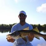 fishing charters southwest Florida
