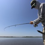 fly fishing Naples