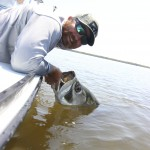 Tarpon fishing charters Naples